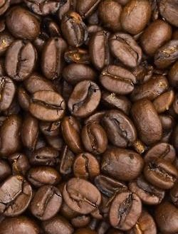 cocoapowder 2