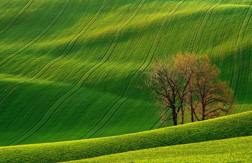Rolling-Hills-Czech-Republic